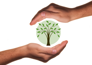 nachhaltigkeit_transparent2